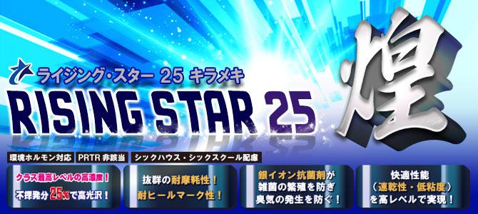 ■不揮発分25%!圧倒的なコストパフォーマンスが更にアップ!■RISING STAR 25 SMOOTH(ライジング・スター25 スムース)[18L/4L] - 高光沢・高耐久・速乾性樹脂ワックス