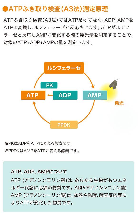 キッコーマンバイオケミファ ルミテスター Smart(スマート) - ATP+ADP+AMPふき取り検査(A3法)【代引不可】 商品詳細04