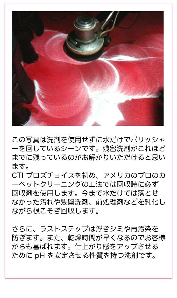 S.M.S.Japan ラストステップ[1ガロン(3.8L)] - カーペット洗浄用回収剤 01