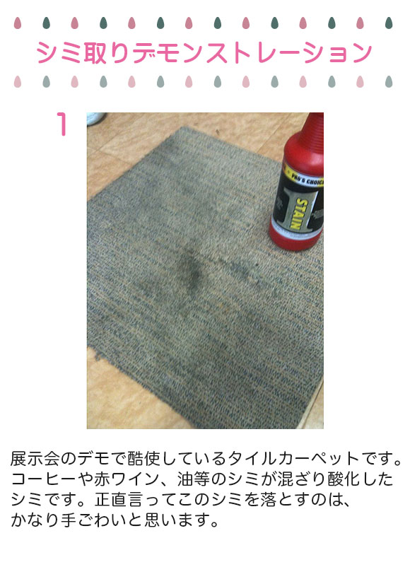 S.M.S.Japan ステイン1(ワン)[960ml] - コーヒー・赤ワイン等のシミ取り剤 02