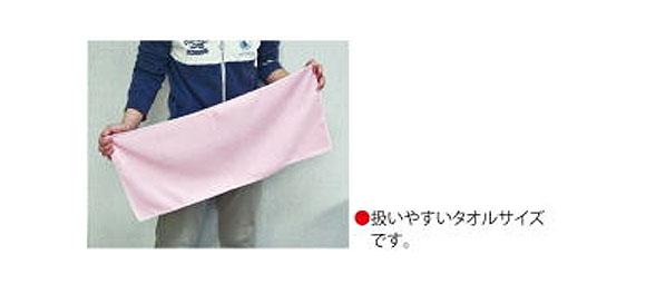 アプソン マイクロタオル#3070 (単色10枚入) 01