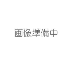 万立(白馬) 次亜塩素酸水ウィッキル(100ppm)10L B.I.B