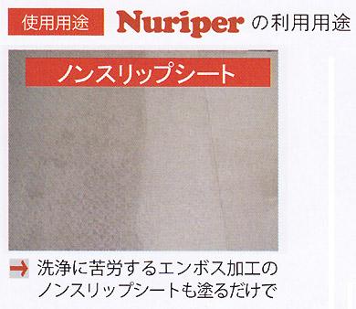 コスケム ヌリッパー - 高圧洗浄機用強力汚染除去クリーナー 01