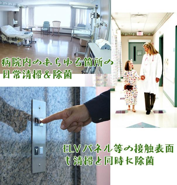 コスケム レモングリーンDD商品詳細05
