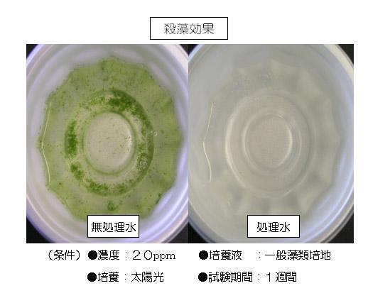 クリアライト工業 アクアクリン[10kg] - お湯の透明度を向上し藻を抑制する浴場水除菌剤 02